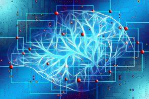 Read more about the article Kann Lernen das Gehirn belohnen?