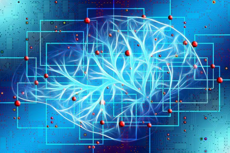 Gehirn Belohnung Spiel